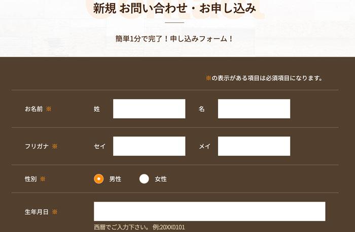 Qpay(キュウペイ)の申し込み画面
