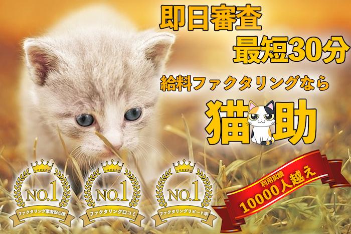猫助のホームページ
