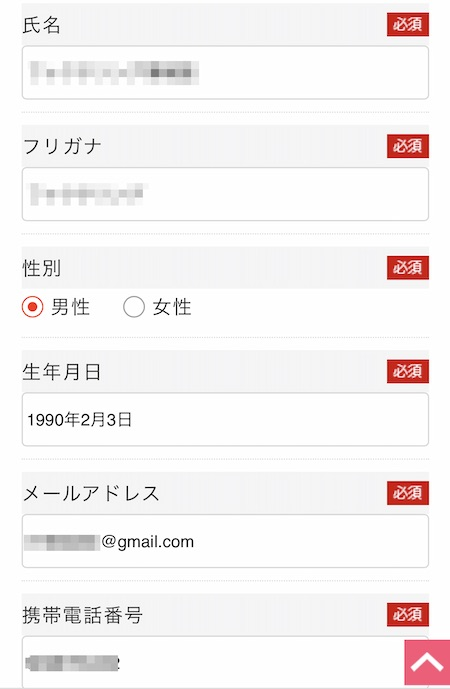 給料マンの申し込み画面